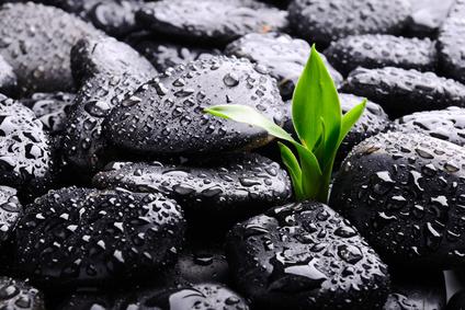 Vídeo conclusiones: ¿Que es la Resiliencia?