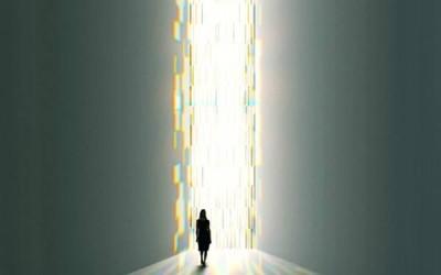 Vídeo conclusiones:¿Realmente somos artifices de nuestra vida?